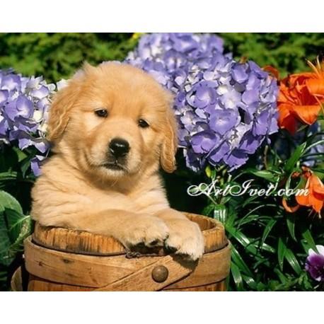 Рисуване по Номера (пълен комплект) - Кученце сред цветята