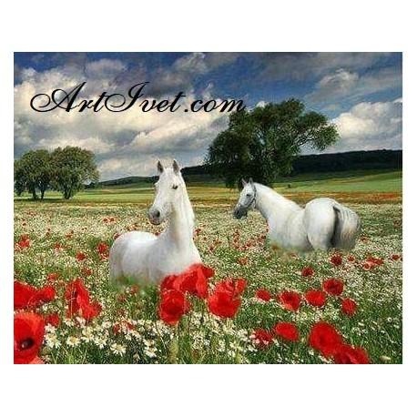 Рисуване по Номера (пълен комплект) - Бели коне сред маковете