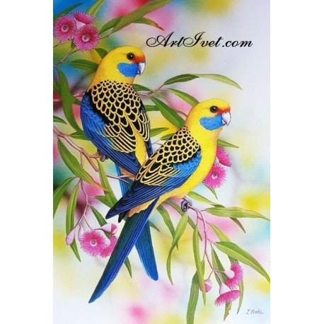 Рисуване по Номера (пълен комплект) -Пъстри канарчета сред цветята
