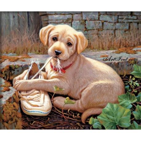 Рисуване по Номера (пълен комплект) - Кученцето и обувката му