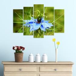 Дизайнерска принт картина СИНЯ МЕТЛИЧИНА /Centaurea cyanus/